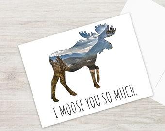 Moose Postcard Set