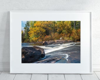 Autumn Forest Print