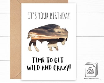 Buffalo Birthday Card