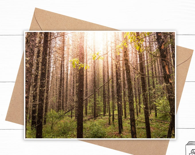 Forest Greeting Card - Nature Art Card - Birch Tree Greeting Card - Blank Personalized Card - Scenic Landscape Card - Ecofriendly Card