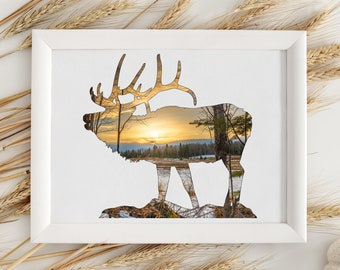 Elk Wall Art Print