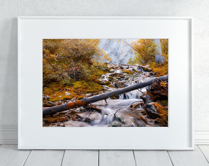 Autumn Photography Print