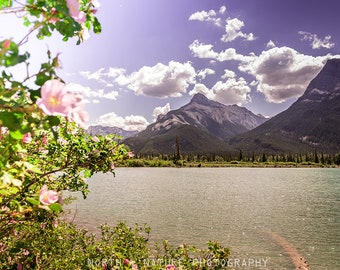 Mountain flowers wall art - Floral wall art - Rocky Mountains wall decor - Banff photography - Summer wall art - Nature gift for her