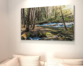 Forest Glow Wall Art and Canvas Wall Decor
