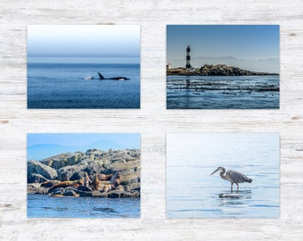 Ocean Postcard Set