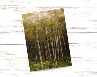 Hardcover Forest Journal