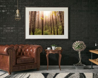 Rustic Forest Wall Art