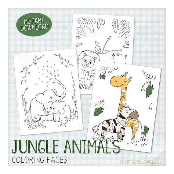 Jungle Animals Coloring Pages Elephant Lion Zebra Giraffe