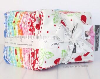 Badda Bing Fat Eighth Bundle - Me & My Sister Designs - 33 pieces