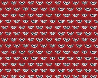 Celebrate America Fabric - Red Banners Fabric - Echo Park Paper Co. - Riley Blake Designs - Patriotic Fabric - Sold by the Yard
