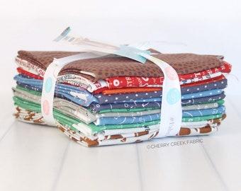 Varsity Football Fat Quarter Bundle - Deena Rutter - Riley Blake Designs - Football Fabric - Sports Fabric - 15 pieces