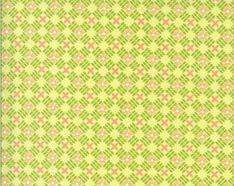 Apricot & Ash Fabric - Lime Petal Path Fabric - Corey Yoder - Moda Fabrics - Floral Fabric - Geometric Fabric - Sold by the Yard