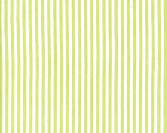 Green Thin Stripe Woven Fabric - Bonnie and Camille Wovens - Moda Fabric - Stripe Binding Fabric - Woven Fabric - Sold by the Yard