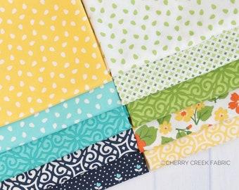 All Weather Friend Mini Fat Quarter Bundle - April Rosenthal - Moda Fabrics - Fabric Bundle - Moda Fat Quarters - 10 pieces