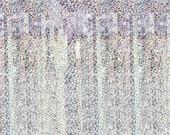 Il_170x135