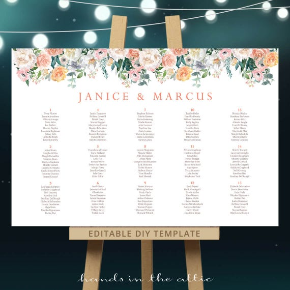 Template Only INSTANT DOWNLOAD 4 Sizes Included Printable Baby Shower Seating Chart with Pink Posies Editable Template