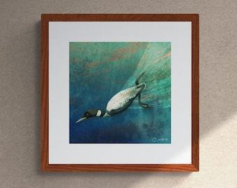 Common Loon Fine Art Giclee Print