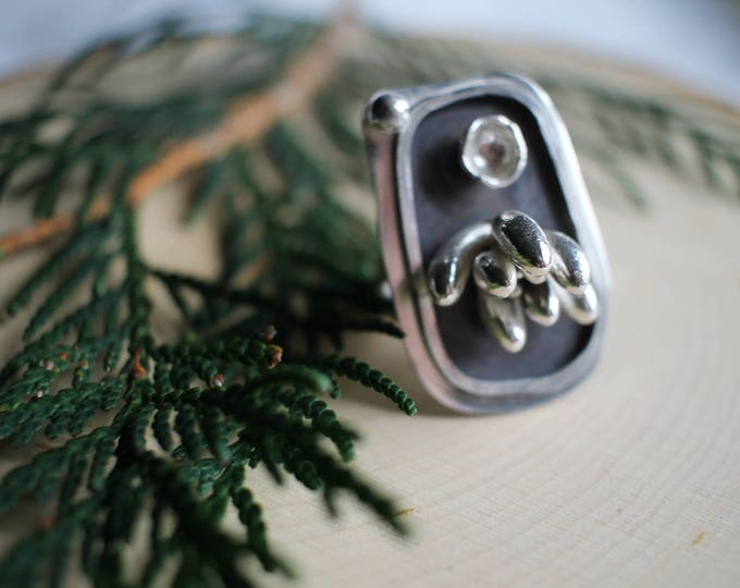 Succulent Shadow Box Ring, Ring size 7, Womens Ring