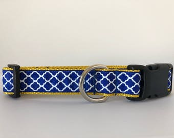 CCI Blue and Yellow Quatrefoil 1 inch Collar