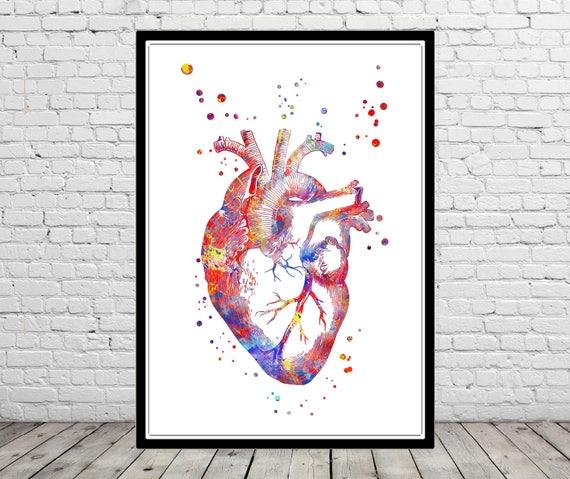 Human Heart Heart Anatomy Medical Art Watercolor Heart Heart Print Abstract Heart Medical Office Decor Watercolor Heart Anatomy