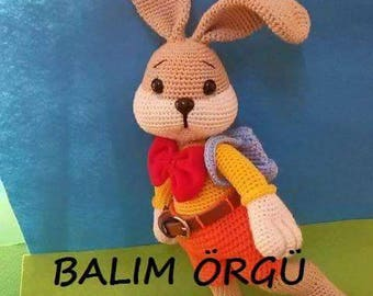 Bunny Goes to School-Amigurumi Crochet Pattern PDF