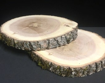 """Large Rustic Wood Slices 8-11"""" diameter, Wedding Centerpiece, Cake Stand, Wood Rounds, Tree Slice, Kiln Dried Wood Slices, Rustic Wood"""