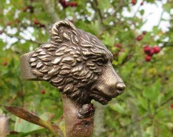 The Great Bear Ring
