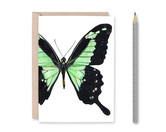 Butterfly Blank Greeting Card