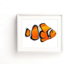 Clown Fish Watercolor Fine Art Print