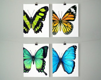 Assorted Butterfly Blank Greeting Cards