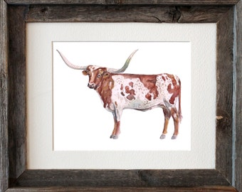 Longhorn Watercolor Fine Art Print