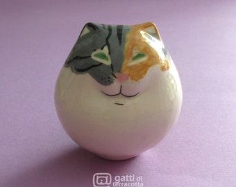 Tricolor cat