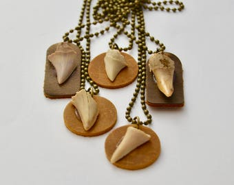 Mens Shark Tooth Necklace