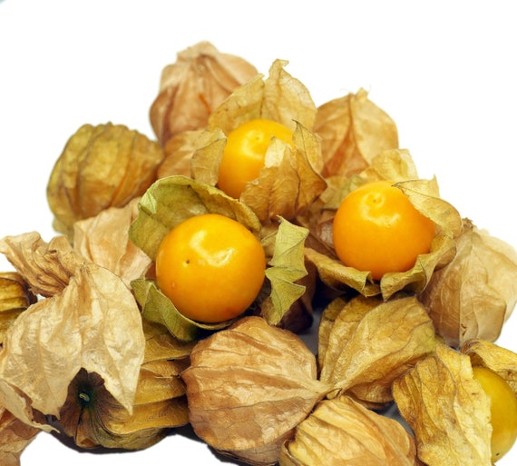 Delicious Pineapple Ground cherry seeds Free shipping 25 fresh heirloom seed