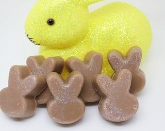 Wiggles McChocolate, wax melts, wax tarts, clamshell, wax for warmers, wax warmer