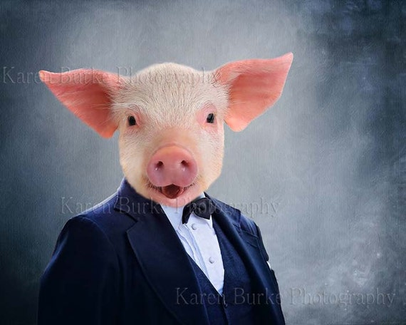 Whimsical Pig Funny Pig Animal Morph Art Whimsical Wall   Etsy