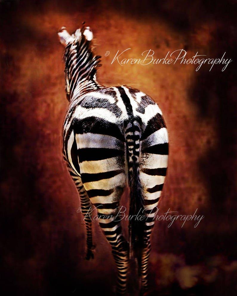 Comical Zebra Art Print - Zebra Butt - 8X10 - 11X14 - 16X20 inches  Whimsical Wall Art Digital Art Print - Home Decor