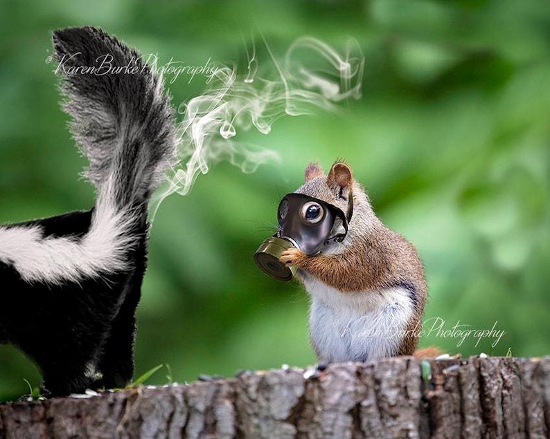 Funny Squirrel Print Whimsical Animal Art Skunk Spray