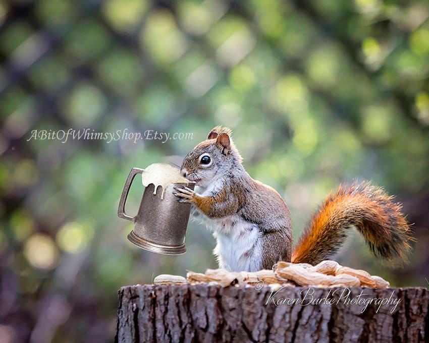 Lustige Eichhörnchen Bier und Nüsse Fotografie-Druck   Etsy