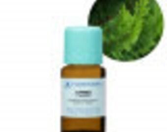 Cypress Essential Oil, Cupressus sempervirens , Aromatherapy, Essential Oils