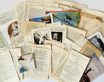 Academic Non fiction and Poetry Junk Journaling Ephemera Pack. Includes Science, History, Languages. Music  for junk journaling.