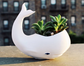 Whale Planter, Dads Gift, 3d Printed,  Whale, Birthday Gift, Cute, Ocean, Gardening, Cute, Adorable, 3d Printed Vase