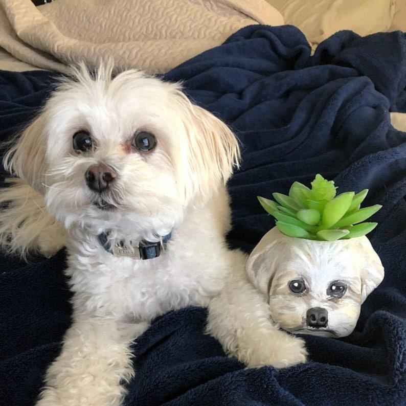 customized dog planters