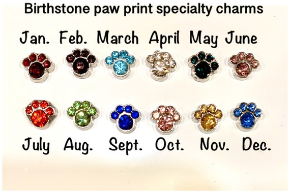 PAW PRINT FEBRUARY  Floating Charm for Living Memory Locket BUY 5 GET 2 FREE