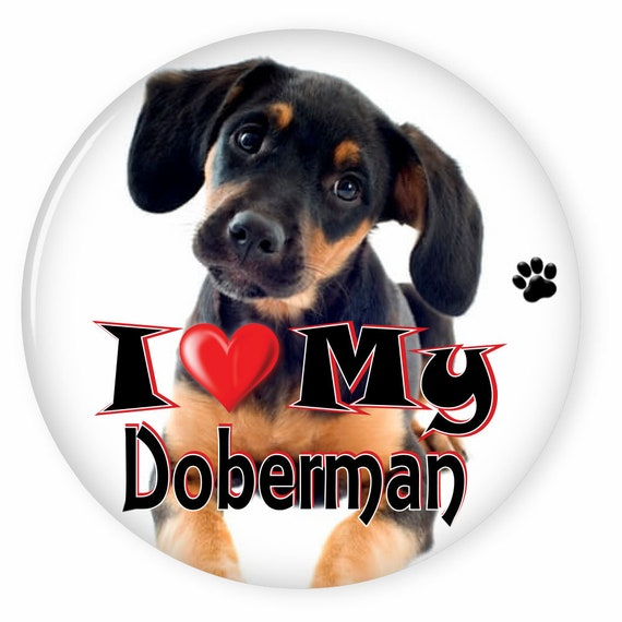 PICTURE BUTTONS DOG DOBERMAN