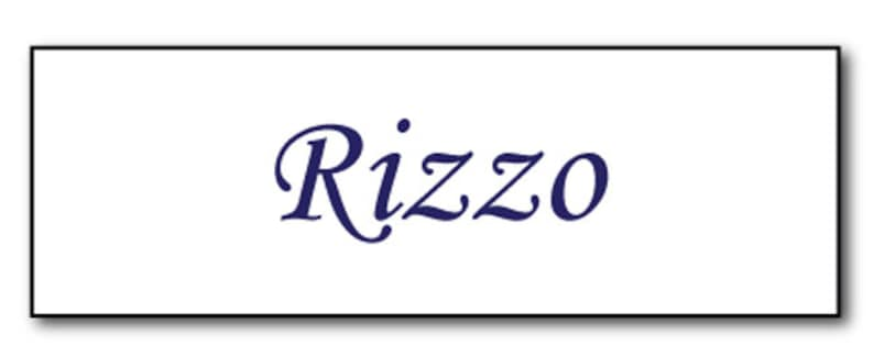 GREASE RIZZO PINK Ladies Halloween Costume or Cosplay Name Badge Tag magnet Fastener /& button