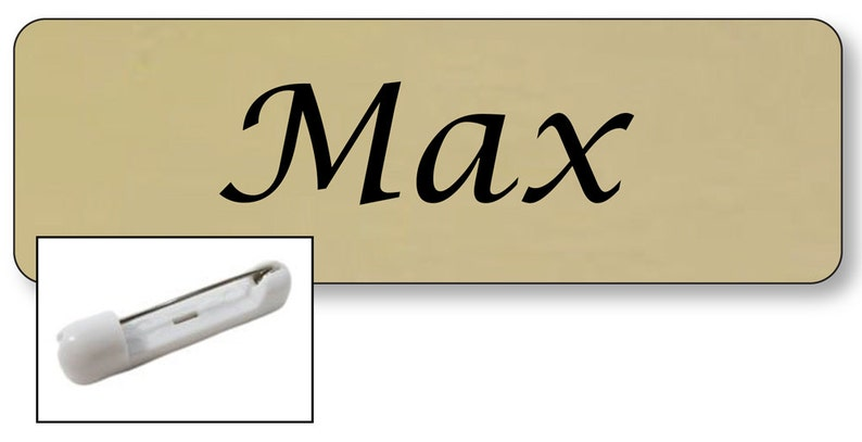 1 MAX From TWO BROKE Girls Halloween Costume Name Badge Tag with a Pin Fastener Ships Free