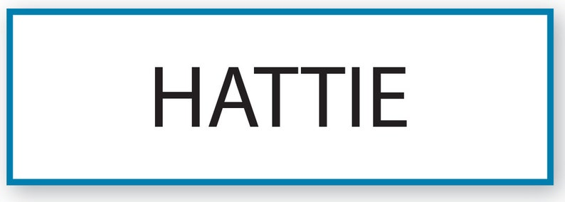 1 HATTIE Waitress From Tyler Perrys LOVE thy NEIGHBOR Halloween Costume Name Badge Tag Pin Fastener Ships Free