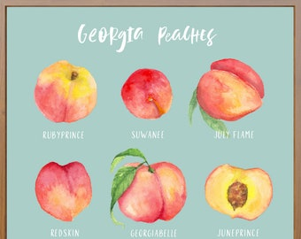 Georgia Peaches Print White Font Variety of Peaches | Etsy