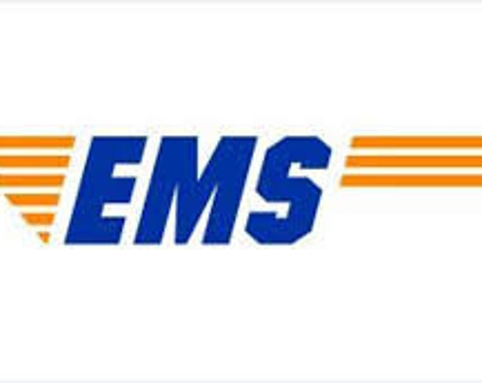EMS PRIORITY PARCEL shipping upgrade